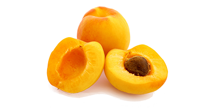 Aprikosen-Samen liegt in dem Aprikosenstein und sieht aus wie eine kleine Mandel