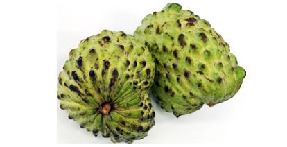 """Der eigentliche Name stammt aber aus Haiti, wo man die Frucht als """"Anon"""" (Rahmapfel) bezeichnete"""