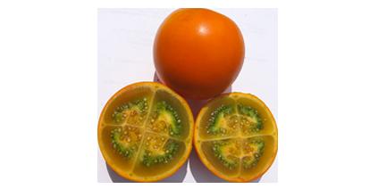 In Europa sind die Früchte kaum erhältlich, da sie sehr schnell reifen und schwierig zu transportieren sind