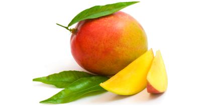 Hier finden Sie die Erntezeiten der Mango im Überblick