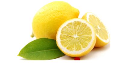Hier finden Sie die Erntezeiten der Zitrone im Überblick